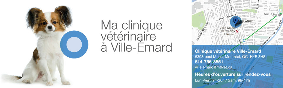 Clinique Ville-Émard